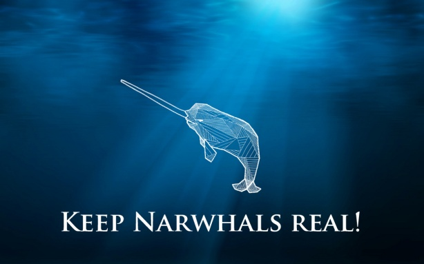 Will this be the last narwhal?